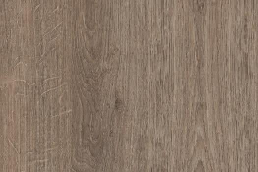 Louisiana-Oak-1-1_525x350_acf_cropped